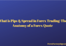 What is Pips & Spread in Forex Trading-The Anatomy of a Forex Quote